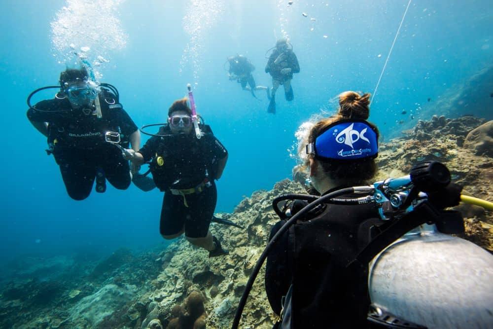 Padi Divemaster Tioman Dive Centre Malaysia